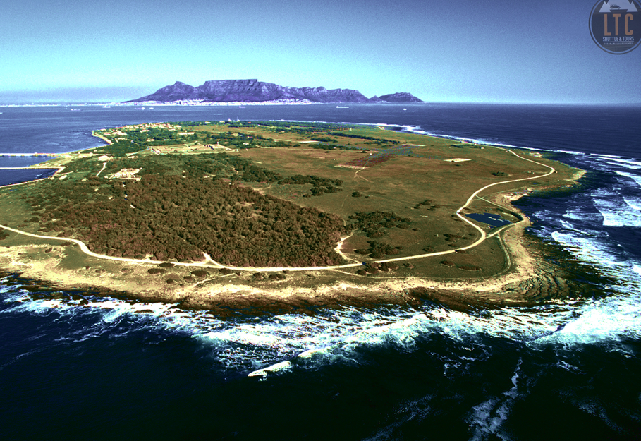 Full Day Private Robben Island Tour